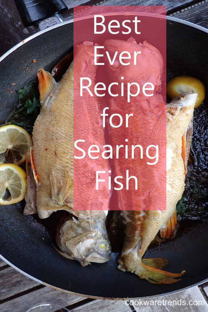 Best Pan for Searing Fish
